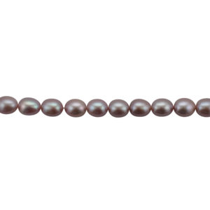 Freshwater Pearl Necklace Row